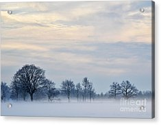 Misty Winter Day Acrylic Print