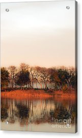 Misty Winter's Morning Acrylic Print by Angela DeFrias