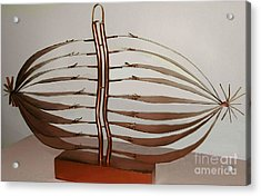 Mitotic Spindle Acrylic Print by Franco Divi