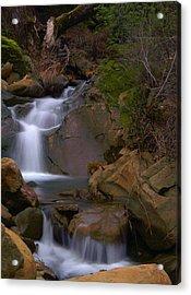 Mix Canyon Creek Acrylic Print by Bill Gallagher