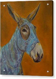 Mo Vision,donkey Acrylic Print