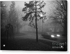 Acrylic Print featuring the photograph Moisture by Steven Macanka
