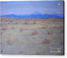 Acrylic Print featuring the painting Mojave Memories by Suzanne McKay