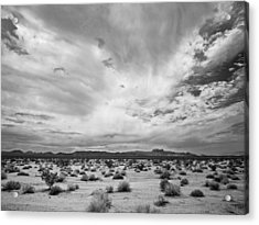 Mojave National Preserve Acrylic Print by Mike Herdering