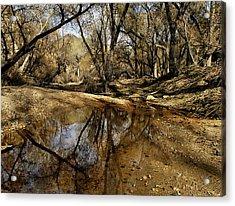Mojave River Acrylic Print