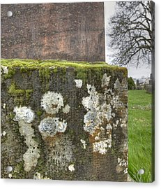 Moldy Above And Below Acrylic Print by Jean Noren