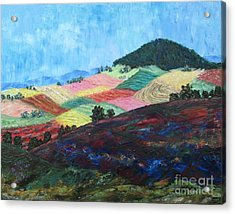 Mole Hill Patchwork - Sold Acrylic Print