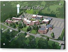 Molloy College Acrylic Print by Rhett and Sherry  Erb