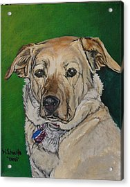 Molly Acrylic Print by Wendy Shoults