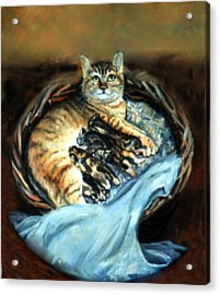 Mom With Her Kittens Acrylic Print by Donna Tucker