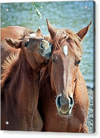 Mommy And Me Acrylic Print by Athena Mckinzie
