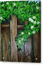 Mom's Backyard Cedar Fence Acrylic Print by Jan Wendt