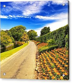 Mona Vale, With Its Homestead Formerly Acrylic Print