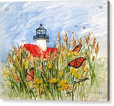 Monarch Butterflies At East Point Light Acrylic Print by Nancy Patterson