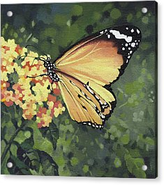 Monarch Butterfly Acrylic Print by Natasha Denger
