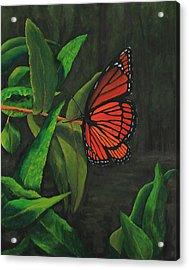 Viceroy Butterfly Oil Painting Acrylic Print