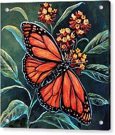 Monarch Acrylic Print by Gail Butler