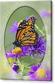 Monarch On Astor Acrylic Print