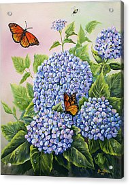 Monarchs And Hydrangeas Acrylic Print by Gail Butler