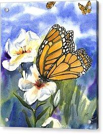 Monarchs In The Gardens Acrylic Print