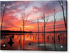 Monday Morning Acrylic Print by Roger Becker