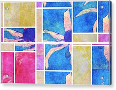 Mondrianity - Daisies 0111 Acrylic Print by Variance Collections