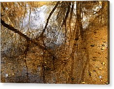 Monet Creek Acrylic Print