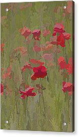 Monet Poppies Acrylic Print by David Letts