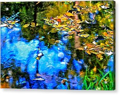 Acrylic Print featuring the photograph Monet's Garden by Ira Shander