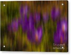 Acrylic Print featuring the photograph Monet's Garden by Sandi Mikuse