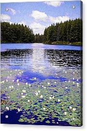 Monet's Wilderness Acrylic Print by Barbara McMahon