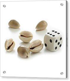 Money Cowry Sea Shells And Dice Acrylic Print