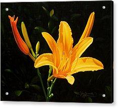 Monikas Lily Acrylic Print by Gary  Hernandez