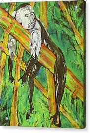 Monkey Nap Acrylic Print