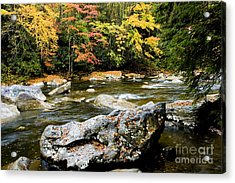 Monongahela National Forest Cranberry River Acrylic Print by Thomas R Fletcher