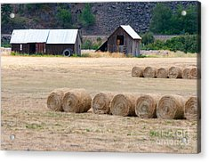 Acrylic Print featuring the photograph Montana Bales by Vinnie Oakes