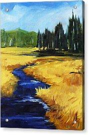 Montana Creek Acrylic Print by Nancy Merkle