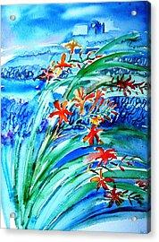 Montbretia On Inisheer  Acrylic Print