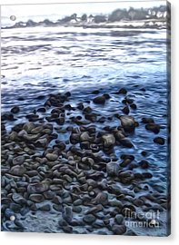 Monterey California - 09 Acrylic Print by Gregory Dyer