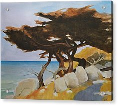 Acrylic Print featuring the painting Monterey Cypress by Ed  Heaton
