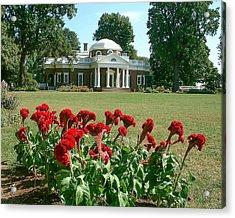 Monticello Cockscomb In Bloom Acrylic Print by David Nichols
