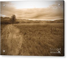 Montour Acrylic Print by Kimberly Maiden