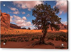 Monument Valley Morning Acrylic Print by Tim Bryan