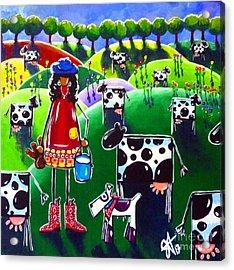 Moo Cow Farm Acrylic Print by Jackie Carpenter