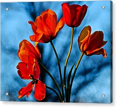 Mood Bouquet Acrylic Print by Frozen in Time Fine Art Photography
