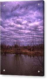 Moody Day Acrylic Print by Kelly Kitchens