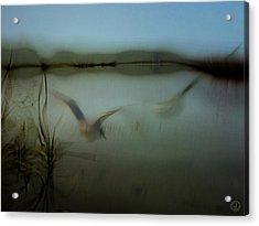 Moody Morning Acrylic Print by Gun Legler