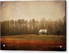 Moody Morning Stillness Acrylic Print by Paulette B Wright