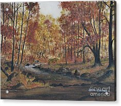 Moody Woods In Fall Acrylic Print by Dana Carroll
