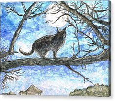 Moon Cat Acrylic Print by Teresa White